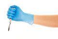 Close up of female doctor's hand in blue sterilized surgical glove with scalpel against white Royalty Free Stock Photo