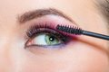 Close up of female eye and brush applying mascara with bright makeup on eyelashes Royalty Free Stock Image