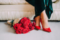 Close-up of female feet in red velvet shoes with red roses Royalty Free Stock Photo