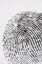 Close-Up Of Finger Print Royalty Free Stock Photo