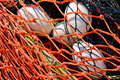 Close-up of fishing net and floats background. Royalty Free Stock Photography
