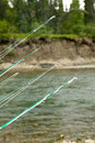 Close up of fishing rod tips with river background Royalty Free Stock Photo