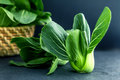 close up Fresh baby green bok choy on the black background , ove Royalty Free Stock Photo