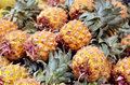 Close up of fresh pineapple on market stand in jerusalem israel Royalty Free Stock Photos