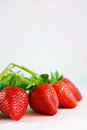 Close up fresh red strawberries Royalty Free Stock Photo