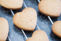 Close up of freshly baked heart shaped cookies cooling off on metal grid Royalty Free Stock Images