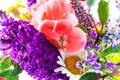 Close Up Of Garden Flowers