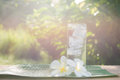 Close up glass of cold water with ice on table with blur garden Royalty Free Stock Photo