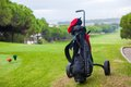 Close up of golf bag on a green perfect field and ball Royalty Free Stock Images