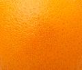 Close up of grapefruit or orange texture Royalty Free Stock Photo