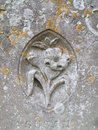 Close up of gravestone Stock Photography