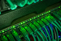 Close up of green network cables connected to switch glowing in the dark Royalty Free Stock Photo