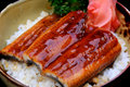 Close up grilled eel in bowl with sauce on rice Royalty Free Stock Photos