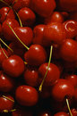 Close up of a group of cherries Stock Images
