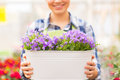 Close up of happy woman holding flowers in pot people gardening and profession concept or gardener big at greenhouse Stock Photo