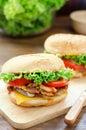 Close up of homemade cheese burger Royalty Free Stock Photo