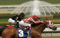 Close-Up of Horse Race with Fountain Royalty Free Stock Photo
