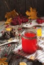 Close up hot Red Drink in glass with cranberry or viburnum berry on wooden table with autumn leaves at village. Food Drink Family