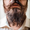 Close up of long beard and mustache man with white shirt Stock Photos