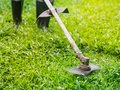 Close up the man mowing the grass. Gardening concept.