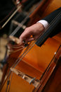 Close-up of a Man Playing Cello Royalty Free Stock Images