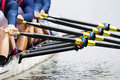 Close up of men's rowing team Royalty Free Stock Photo