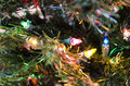 Close up of miniature christmas lights multi colored on an artificial tree Royalty Free Stock Photography