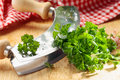 Close up of a modern herb cutter wiegemes with wooden handles and a clump of parsley on the blade Royalty Free Stock Photography