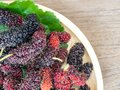 Close up of mulberry with a green leaves on the wooden plate on wooden table. Mulberry this a fruit and can be eaten in have a red Royalty Free Stock Photo