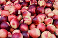 Close up of nectarine Stock Images