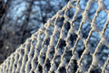 Close up net with hoarfrost Stock Images
