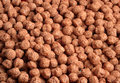 Close-up ofchocolate cereal bits Stock Photo