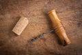 Corkscrew  and dork. Royalty Free Stock Photo