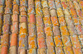 Close up of old rust red roof texture tile. Architecture background. Royalty Free Stock Photo