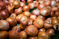 Close-up of onions in grocery store Royalty Free Stock Photo