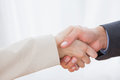 Close up on partners shaking hands in bright office Stock Image