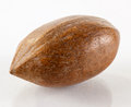 Close up of pecan nut Royalty Free Stock Photo