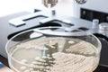 Close up of petri dish on laboratory microscope Royalty Free Stock Photo