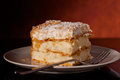 Close up photograph tasty piece millefeuille Stock Photos