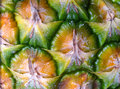 Close up of pineapple skin Royalty Free Stock Photo