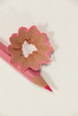 Close-up of pink colored pencil with shavings Royalty Free Stock Photo