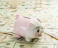 Close up pink piggy bank standing dollar notes table Stock Photo