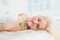 Close up of a pretty woman in bed with a rose young at home Royalty Free Stock Photos