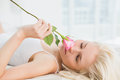 Close up of pretty young woman in bed with a rose at home Royalty Free Stock Image