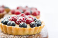 Close up profile of a dessert appetising fruit tart consisting blueberries and raspberries sprinkled with icing sugar Stock Images