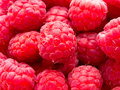 Close up of rasberries a image raspberries Stock Photography