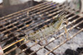 Close up raw shrimps impale with wood Royalty Free Stock Photo