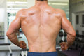 Close-up rear view of a bodybuilder in gym Royalty Free Stock Photo