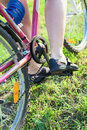 Close up rear view of feet of caucasian cyclist on cycle sitting the Royalty Free Stock Photography