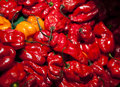 Close-up of red chillies in grocery store Royalty Free Stock Photo
